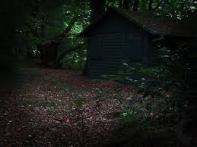 creepy shed